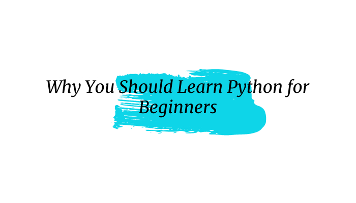 Why You Should Learn Python for Beginners
